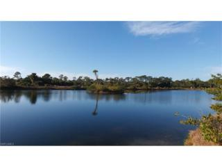3371 Heron Landing Cir, Other, FL 33956 (MLS #217008780) :: The New Home Spot, Inc.
