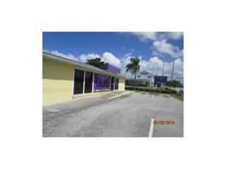 3810 Del Prado Blvd S, Cape Coral, FL 33904 (MLS #217008963) :: The New Home Spot, Inc.