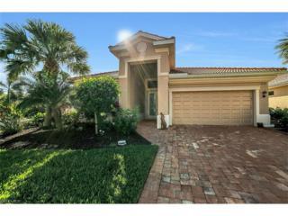 9157 Astonia Way, Estero, FL 33967 (MLS #217009213) :: The New Home Spot, Inc.