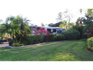 3024 Cupola Ln N, Labelle, FL 33935 (MLS #217009262) :: The New Home Spot, Inc.