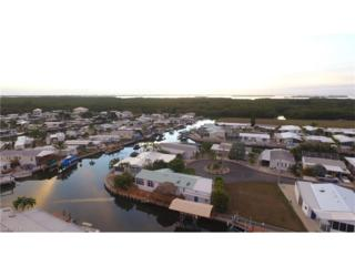 2950 Skipper Ln, St. James City, FL 33956 (MLS #217009601) :: The New Home Spot, Inc.