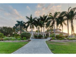 1450 SW 58th Ter, Cape Coral, FL 33914 (MLS #217009674) :: The New Home Spot, Inc.
