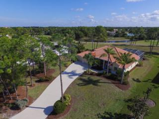3020 Big Pass Ln, Punta Gorda, FL 33955 (MLS #217009768) :: The New Home Spot, Inc.
