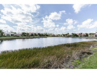 11270 Pond Cypress St, Fort Myers, FL 33913 (MLS #217009846) :: The New Home Spot, Inc.