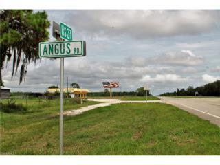 201 Angus Rd, Venus, FL 33960 (MLS #217010021) :: The New Home Spot, Inc.
