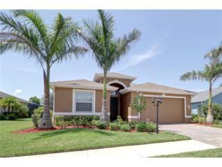 259 Destiny Cir, Cape Coral, FL 33990 (MLS #217010048) :: The New Home Spot, Inc.