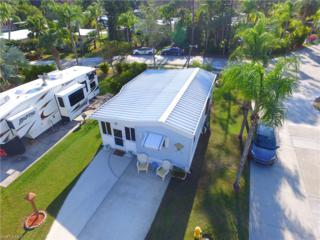 10753 Everglades Kite Cir, Estero, FL 33928 (MLS #217010464) :: The New Home Spot, Inc.
