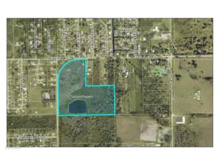 Old Olga Rd, Fort Myers, FL 33905 (MLS #217011018) :: The New Home Spot, Inc.