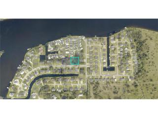 14960 Wise Way, Fort Myers, FL 33905 (MLS #217011184) :: The New Home Spot, Inc.
