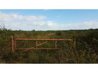 2495 Christopher Ln, Clewiston, FL 33440 (MLS #217011258) :: The New Home Spot, Inc.