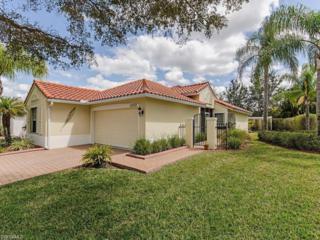20069 Serene Meadow Ln, Estero, FL 33928 (MLS #217011507) :: The New Home Spot, Inc.