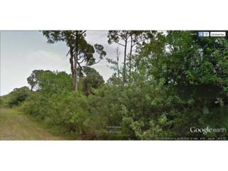 785 N Live Oak St, Clewiston, FL 33440 (MLS #217011525) :: The New Home Spot, Inc.