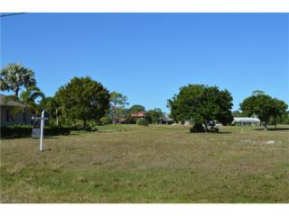 1436 NW 25th Pl, Cape Coral, FL 33993 (MLS #217011627) :: The New Home Spot, Inc.