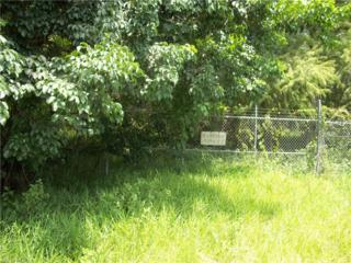 6960 Flaghole Rd, Other, FL 33440 (MLS #217011655) :: The New Home Spot, Inc.