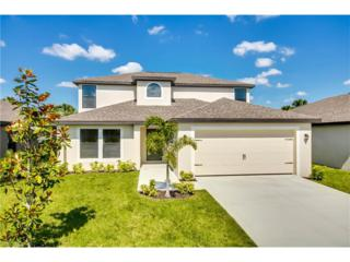 306 Shadow Lakes Dr, Lehigh Acres, FL 33974 (MLS #217011737) :: The New Home Spot, Inc.