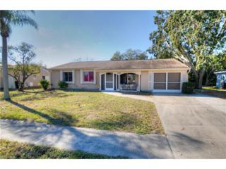 6847 Carovel Ave, North Port, FL 34287 (MLS #217012075) :: The New Home Spot, Inc.