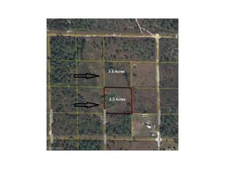 4155 Pioneer 22nd St, Clewiston, FL 33440 (MLS #217012104) :: The New Home Spot, Inc.