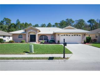 7678 Woodland Bend Cir, Fort Myers, FL 33912 (MLS #217012244) :: The New Home Spot, Inc.
