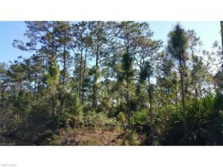 Sweetwater Avenue, Clewiston, FL 33440 (MLS #217012395) :: The New Home Spot, Inc.