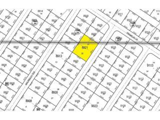 Talisman Ter, North Port, FL 34286 (MLS #217012668) :: The New Home Spot, Inc.