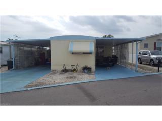 3713 Dewberry Ln, St. James City, FL 33956 (MLS #217012866) :: The New Home Spot, Inc.