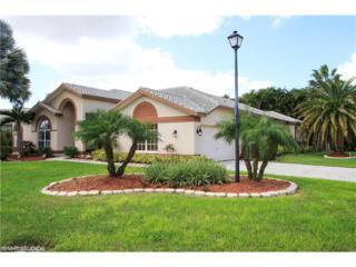 12720 Chardon Ct, Fort Myers, FL 33912 (MLS #217012880) :: The New Home Spot, Inc.