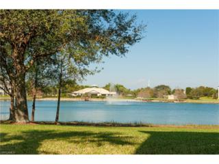 14081 Brant Point Cir #5101, Fort Myers, FL 33919 (MLS #217012996) :: The New Home Spot, Inc.
