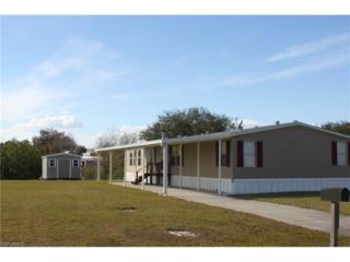 1127 Peaceful Ln, Moore Haven, FL 33471 (MLS #217013064) :: The New Home Spot, Inc.