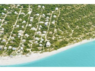 4431 Oyster Shell Dr, Captiva, FL 33924 (MLS #217013071) :: The New Home Spot, Inc.