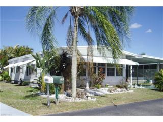 2858 Indianwood Dr, North Fort Myers, FL 33917 (MLS #217013406) :: The New Home Spot, Inc.