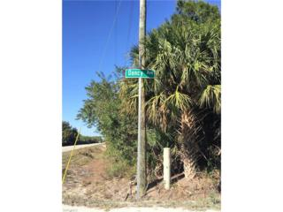 13408 Dancy Ave, Clewiston, FL 33440 (MLS #217013720) :: The New Home Spot, Inc.