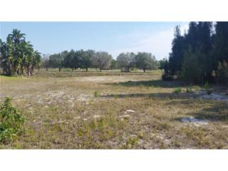6601 Astoria Ave, Fort Myers, FL 33905 (#217013721) :: Homes and Land Brokers, Inc