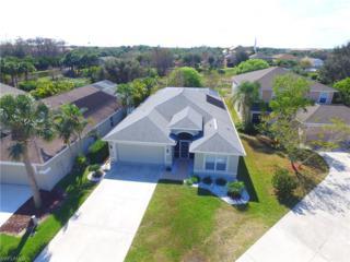 12846 Fox Hollow Cir, Fort Myers, FL 33912 (MLS #217013945) :: The New Home Spot, Inc.