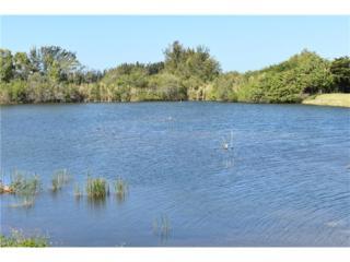2664 Sunvale Ct, Cape Coral, FL 33991 (MLS #217014141) :: The New Home Spot, Inc.