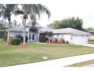 14401 Bald Eagle Dr, Fort Myers, FL 33912 (MLS #217014453) :: The New Home Spot, Inc.