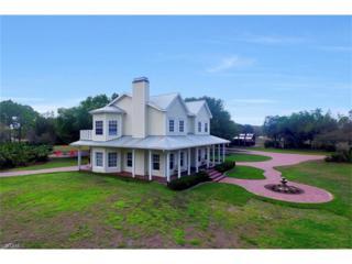 18960 Serenoa Ct, Alva, FL 33920 (MLS #217014755) :: The New Home Spot, Inc.