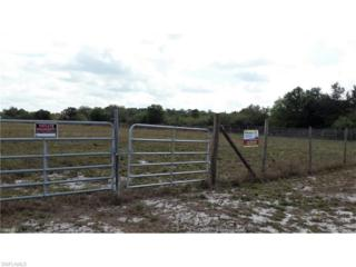 Address Not Published, Clewiston, FL 33440 (MLS #217014756) :: The New Home Spot, Inc.