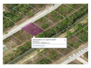 LOT 46 Snowdrop St, North Port, FL 34288 (MLS #217014820) :: The New Home Spot, Inc.
