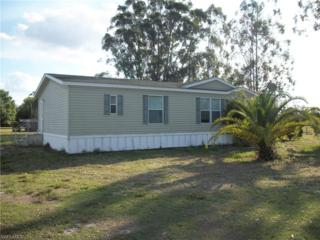 6450 Surrency Rd, Clewiston, FL 33440 (MLS #217015350) :: The New Home Spot, Inc.