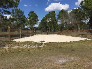 13409 Dancy Ave, Clewiston, FL 33440 (MLS #217015561) :: The New Home Spot, Inc.