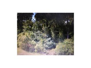 Alhambra Ave, North Port, FL 34291 (MLS #217015726) :: The New Home Spot, Inc.