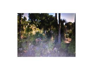 Nanette Ln, North Port, FL 34286 (MLS #217015735) :: The New Home Spot, Inc.