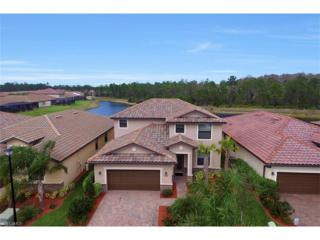 9509 River Otter Dr, Fort Myers, FL 33912 (MLS #217016116) :: The New Home Spot, Inc.