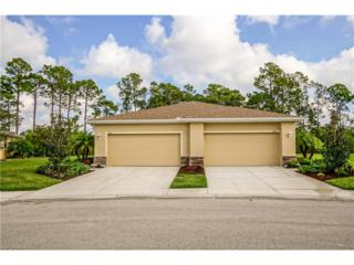 3141 Redstone Cir, North Fort Myers, FL 33917 (MLS #217016244) :: The New Home Spot, Inc.
