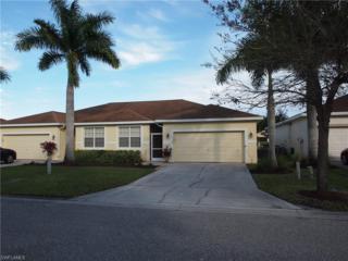 14140 Danpark Loop, Fort Myers, FL 33912 (MLS #217016332) :: The New Home Spot, Inc.