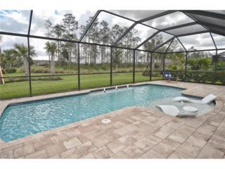 20423 Black Tree Ln, Estero, FL 33928 (MLS #217016653) :: The New Home Spot, Inc.