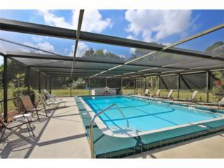 5781 Littlestone Ct #5787, North Fort Myers, FL 33903 (MLS #217016799) :: The New Home Spot, Inc.