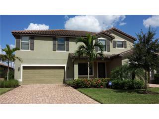 20473 Black Tree Ln, Estero, FL 33928 (MLS #217016923) :: The New Home Spot, Inc.