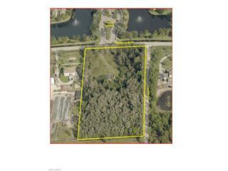 8550 Penzance Blvd, Fort Myers, FL 33912 (MLS #217016948) :: The New Home Spot, Inc.