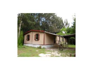 1160 Tampa Ave, Clewiston, FL 33440 (MLS #217017029) :: The New Home Spot, Inc.
